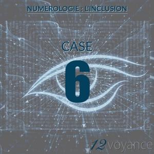 Nombre d'inclusion 6